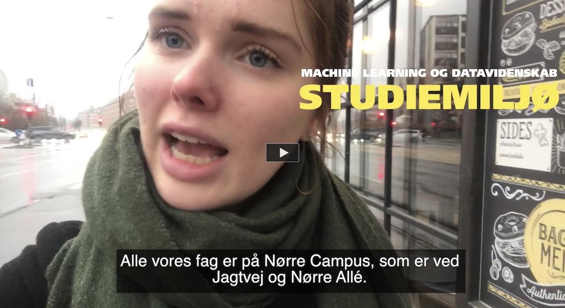 Dagbogsvideo om studiemiljøet på bacheloruddannelsen i machine learning og datavidenskab