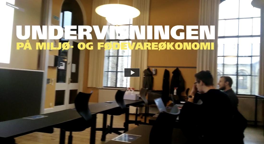 Dagbogsvideo om det faglige på bacheloruddannelsen i miljø- og fødevareøkonomi